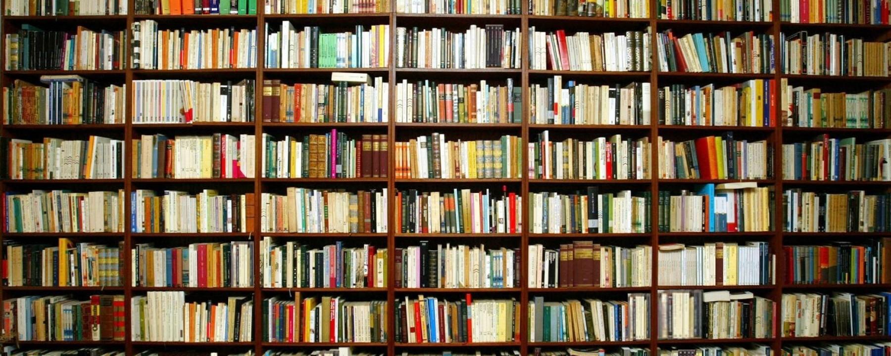 ¿Cuál fue el detonante para que comenzarás a escribir tus libros?